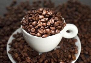 a7452c38b35b22b9f378e2b2325f485d - Caffeine – What's the Buzz?